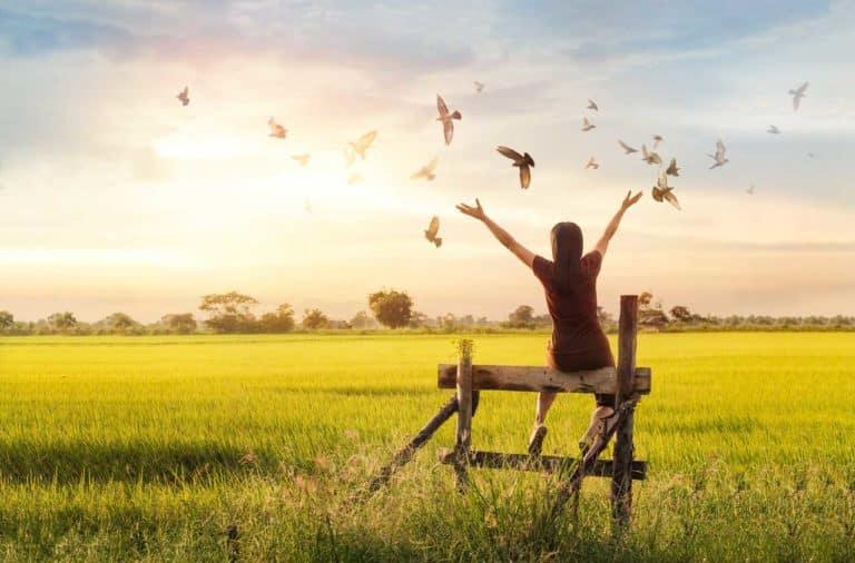 Eine Person von hinten, die auf einer Wiese auf einem Zaun sitzt und glücklich ist. Im Hintergrund der Sonnenuntergang