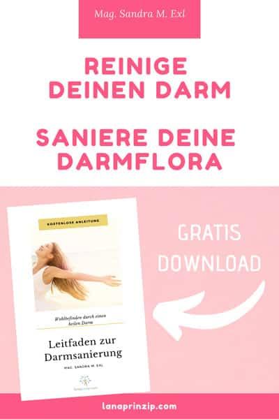 Cover des Leitfadens zur Darmsanierung